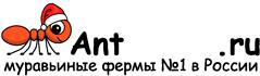 Муравьиные фермы AntFarms.ru - Нижневартовск
